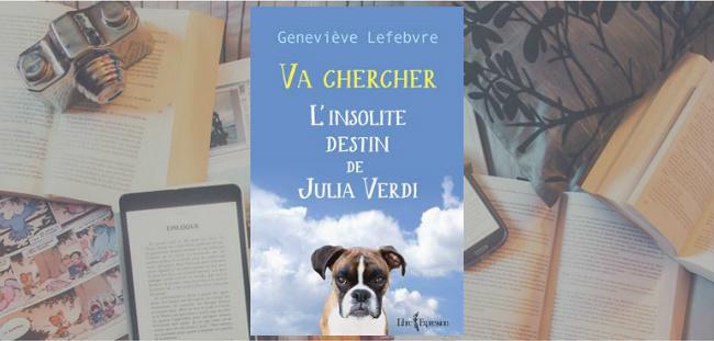 """Couverture du roman """" Va chercher"""" de Geneviève Lefebvre, chez Libre Expression."""