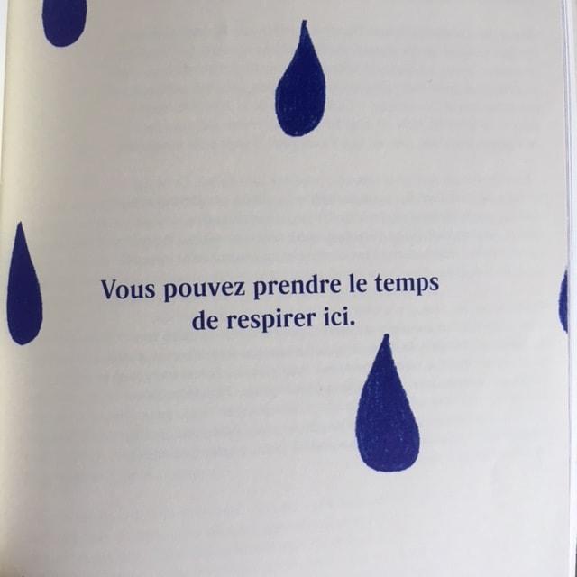 Extrait du livre Faire oeuvre utile de Émilie Perreault, aux Éditions Cardinal.